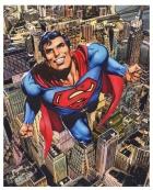 superman adams