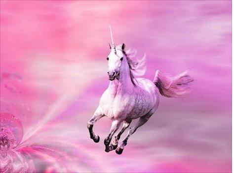 pink-unicorn26