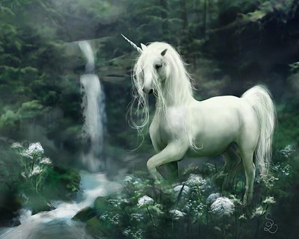 unicorn14