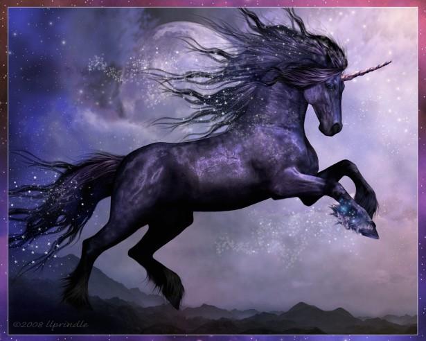 unicorn20
