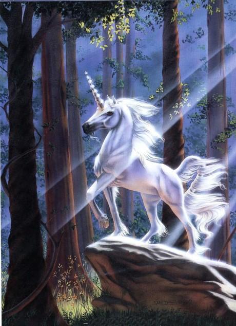 unicorn49