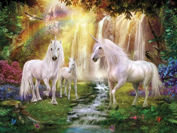 unicorns13